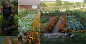 2 miejsca – Ogrodnicze z elementami permakultury nasze Siedlisko